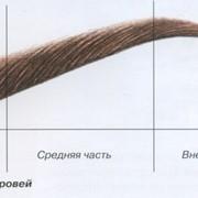 Коррекция бровей фото