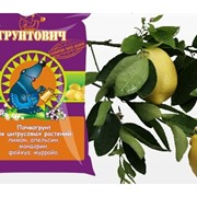 Почвогрунт для цитрусовых растений фото