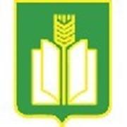 Семена подсолнечника Ясон, Юрьева, Форвард фото