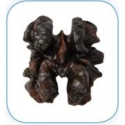 Грецкий орех - клacc 2: Ядра орехов по цвету не темнее темно-коричневого оттенка. Более темные ядра орехов могут продаваться по данному классу с указанием цвета на упаковке. фото