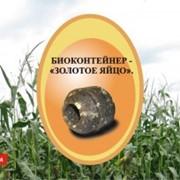 Удобрения садовода Золотое яйцо фото