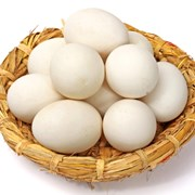 Гусиные инкубационные яйца в Башкирии. Сезон 2019 фото