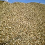 Песчано гравийная смесь ПГС фото