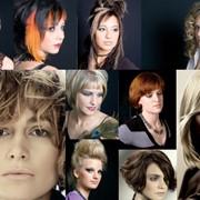 Обучение парикмахеров фото