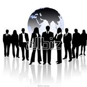 Организация бизнес-туров фото