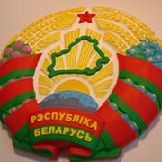Герб Республика Беларусь,гипс,акрил,диаметр 340 мм. фото
