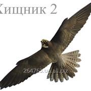 Отпугиватель птиц визуальный Хищник 2 малый фото