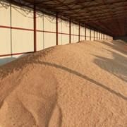 Хранение зерна. Хранение пшеницы, ячменя фото