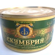 Скумбрия атлантическая 240 гр. ( в кор. 48 шт) фото