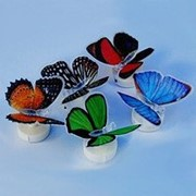 Светодиодные бабочки NY-001 фото