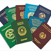 Услуги в сфере миграции фото
