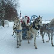 День рождения Деда Мороза фото