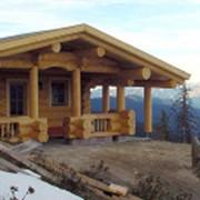 Деревянные дома из кедра фото