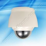 Видеокамера Novus NVC-MSD322DN/O Speed Doom фото