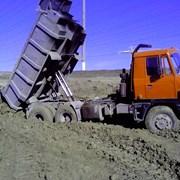 Услуги самосвалов 20-35 тонн.Круглосуточно. фото