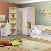Детская Юниор-5 Цветочек модульная серия фото