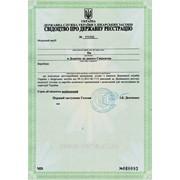 Декларация изделия медицинского назначения фото