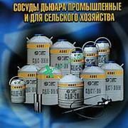 Сосуд Дьюара СДС-16 фото