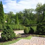 Проектирование зимних садов. фото