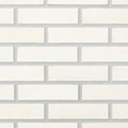Oблицовочный кирпич пустотелый Lode BLANKA белый гладкий 250x85x65 фото