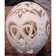 Скорлупа страусиного яйца декоративная фото