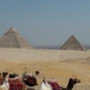 Экскурсия к пирамидам Гизы, Мемфис и Саккара фото