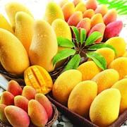Поставка фруктов напрямую от производителя фото