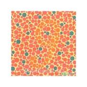 Таблица для определения остроты зрения и цветовосприятия (Рабкина) фото