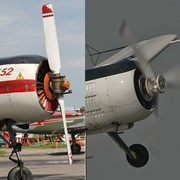 Самолет ЯК-52 фото