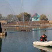 Рыбалка, Рыбалка в алматы фото