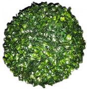 Искусственный самшит шар d 25 см (светло-зеленый) фото
