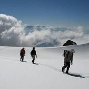 Пешие походы в горы заказать Буковель фото