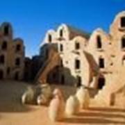 Тур в Тунис. фото