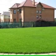 Изготовление газона для коттеджей фото