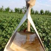 Феромонная Ловушка (Маниторинговая) производитель Бельгия. фото