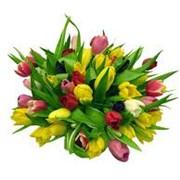 Заказать букет цветов, купить, цена, свадебный букет фото