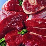 Мясо в Алматы фото