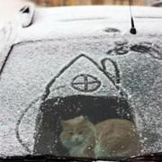 Создание эффекта снега фото