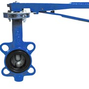 Затвор дисковый поворотный VFY/WG (SYLAX) Danfoss Ду 300 Ру 16 фото