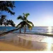 Пляжный курорт фото