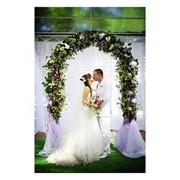 Свадьба — проведение и организация фото