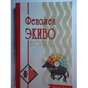 Книга Феномен ЭКИВО фото