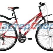 """Велосипед женский Jade 1.0 (15"""", 17"""") фото"""