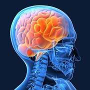 Неврология (Заболевания центральной и периферической нервной системы) фото