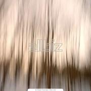Наращивание волос в Алматы фото