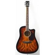 Акустическая гитара Emio SW-201 фото