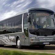 Автобусы междугородные MAN фото