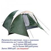 Прокат палаток фото