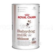 Заменитель молока для щенков Royal Canin Babydog Milk 0,4 кг фото
