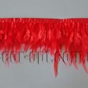 Перо-юбка красная 8-13см/48-50см 570433 фото